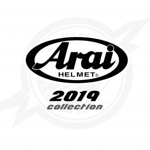 Arai2019